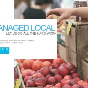 local seo, local seo marketing, local business seo, local search engine optimization